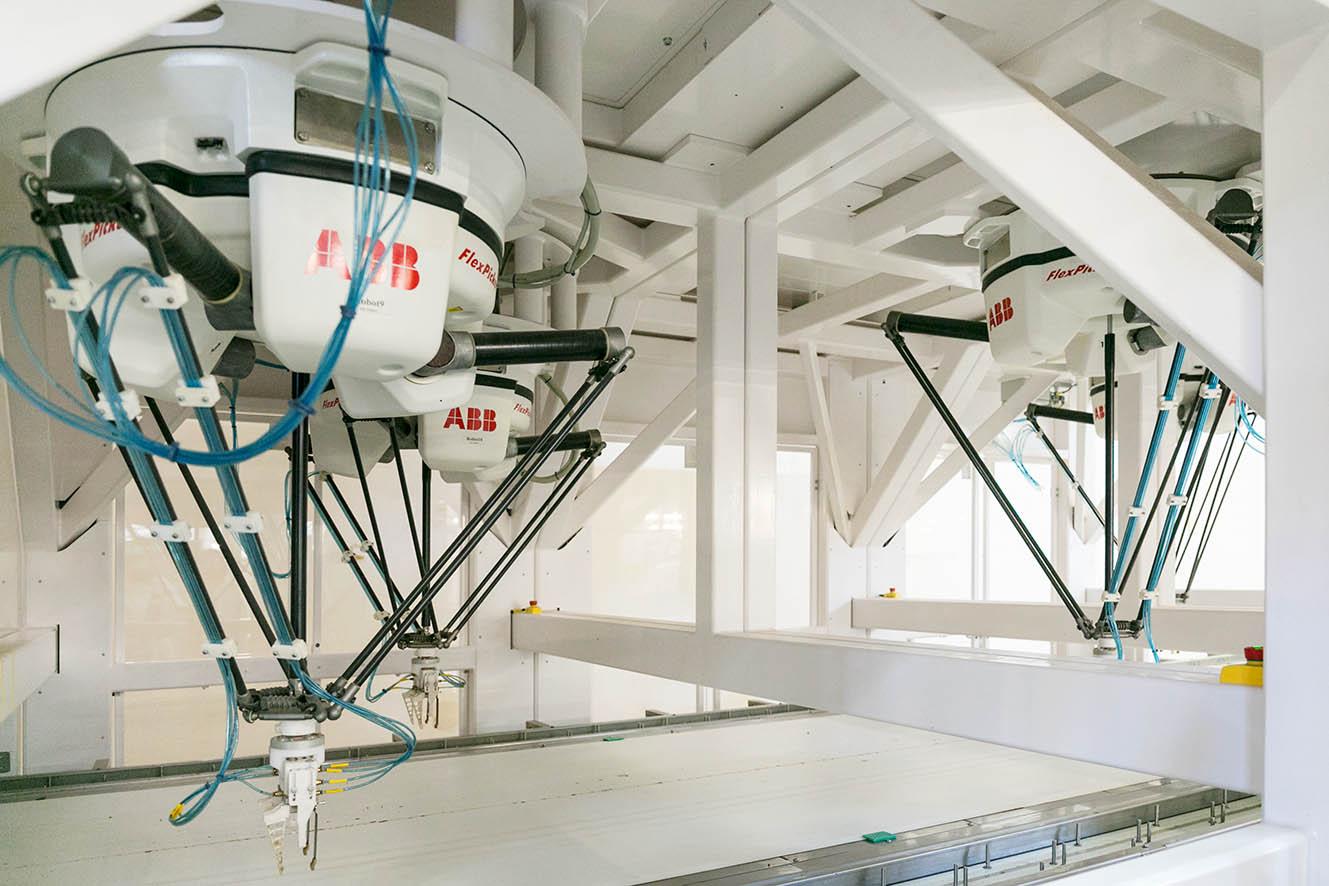 Precyzja i wydajność – roboty ABB w jednym z największych zakładów cukierniczych w Europie